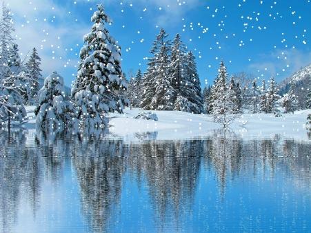 Winter Cold Christmas Snowfall Snow Wintry