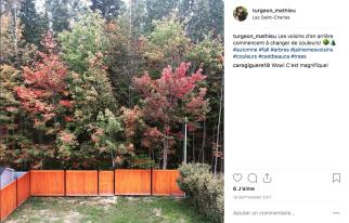 Les belles couleurs de l'automne dernier!