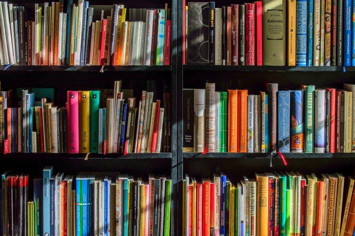 books-1204029_1920 (1)